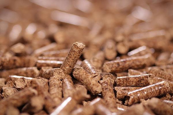 Come scegliere caldaia pellet - Onor&Borin