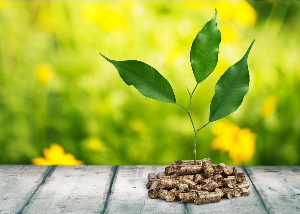 Le associazioni del settore rinnovabili scrivono al Mise