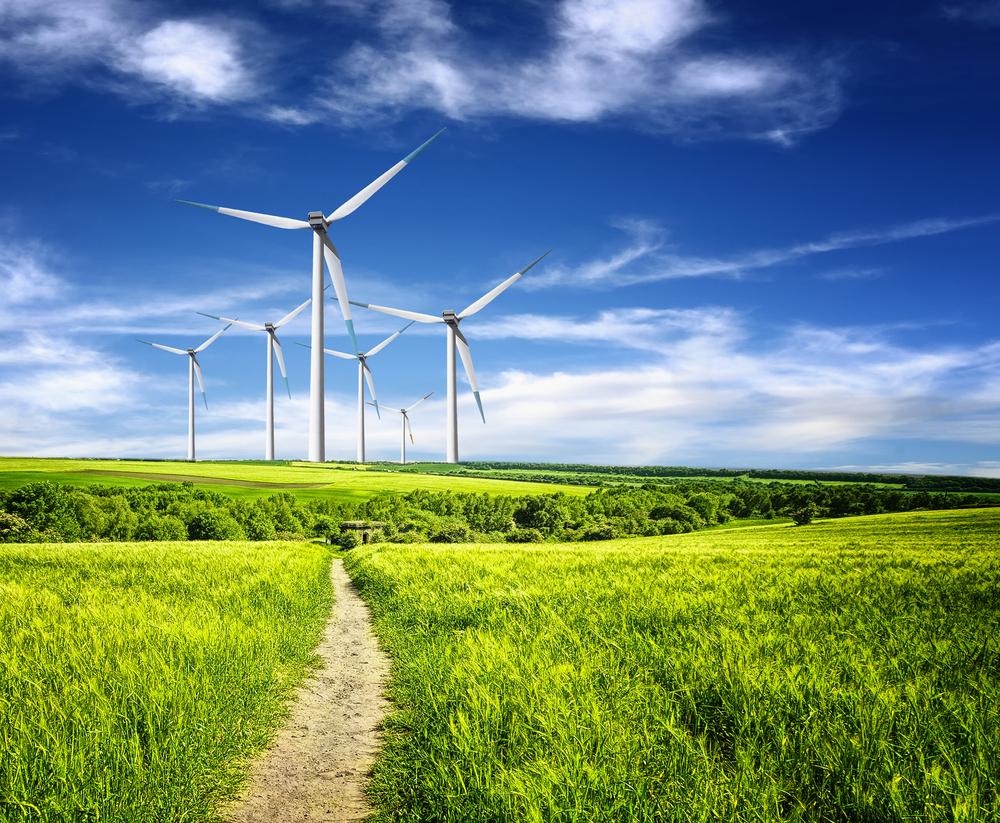 Il GSE pubblica i nuovi bandi per le FER non fotovoltaiche