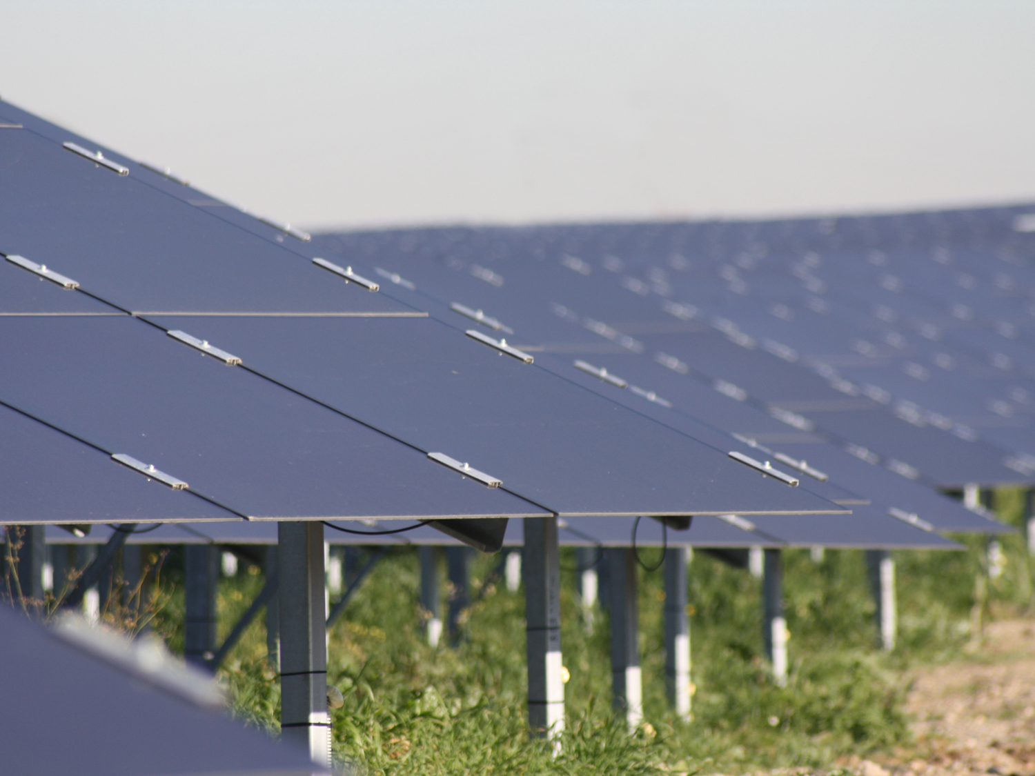Free: male le modifiche al Dl Competitività in materia di incentivi al fotovoltaico