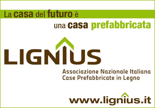 lignus.jpg