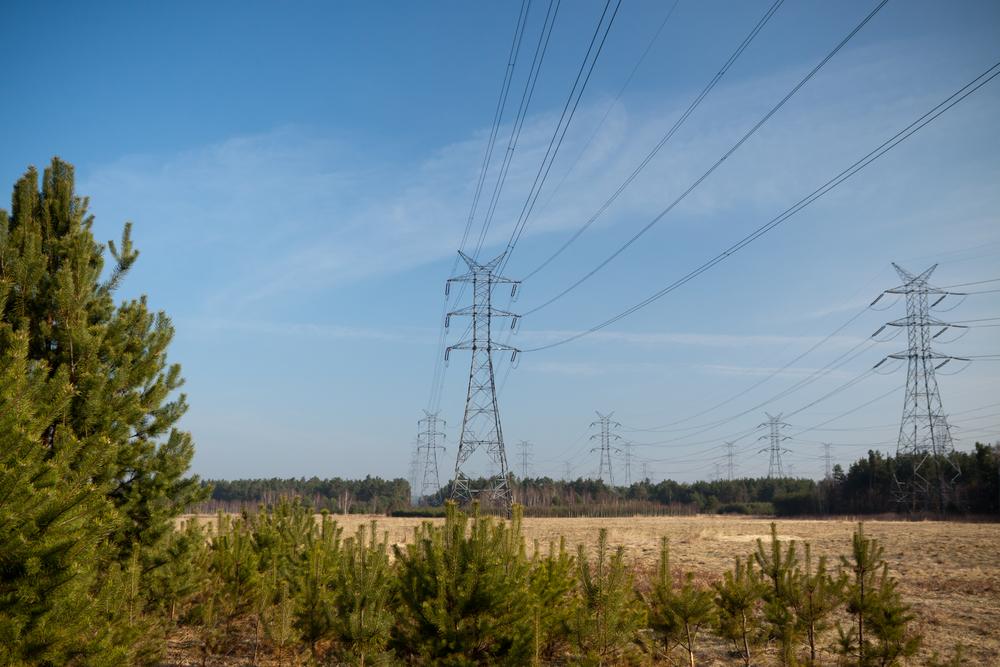 Consumi di energia elettrica in Italia: a gennaio +4,9%