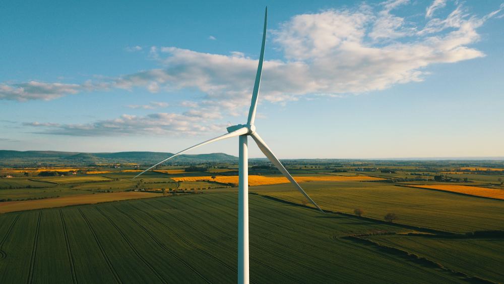 Una campagna online per supportare la transizione energetica
